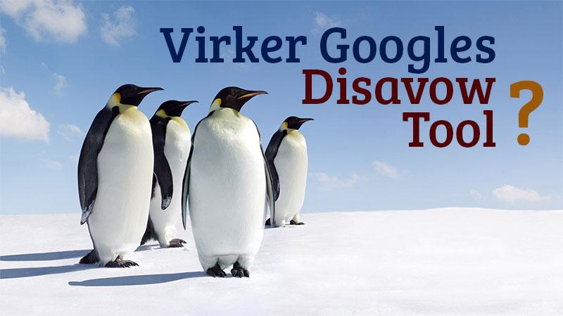 Virker Googles Disavow Tool?